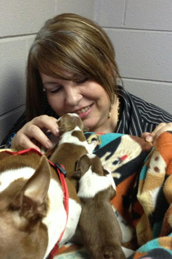 Angie n Puppies