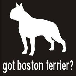 Got Boston