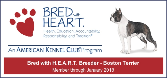 Bred with heart logo