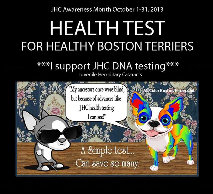 boston health test