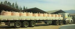 camion_cal