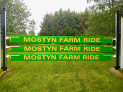 Mostyn