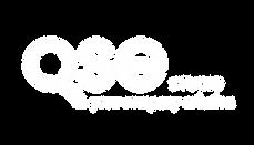 logo bianco sfondo trasparente.png