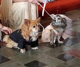 SDHH Wedding 2018.jpg