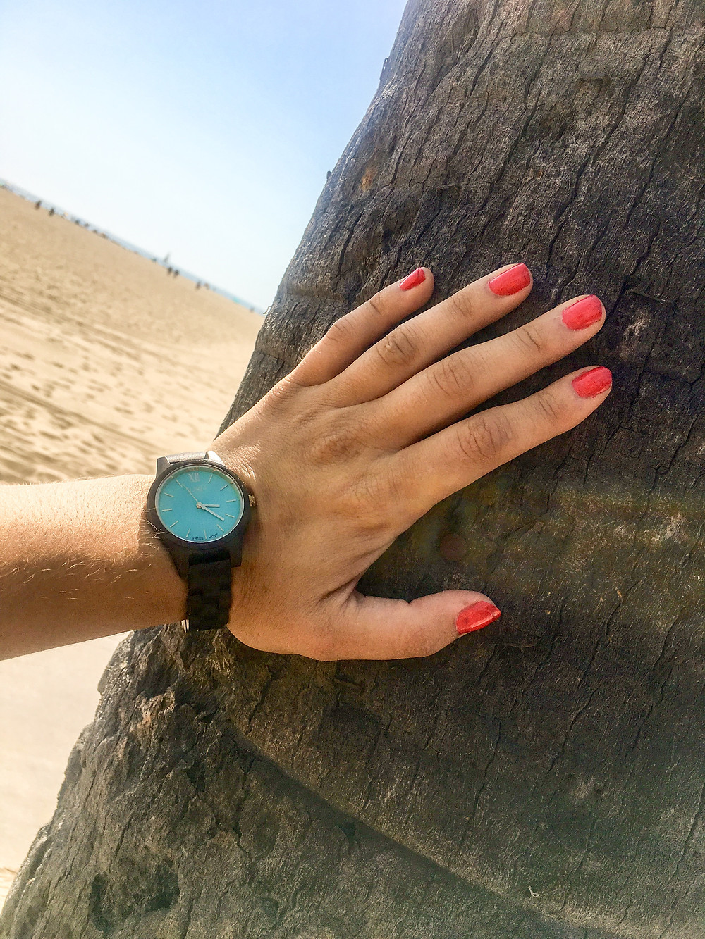 Venice Beach JORD wood watch