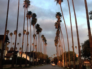 How to Live In Los Angeles On A Budget When You First Move
