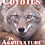 Thumbnail: Trapping Coyotes in Agriculture - DVD