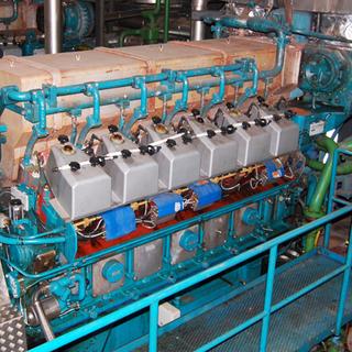 Wartsila 12V25SG Cogeneration Power Plant