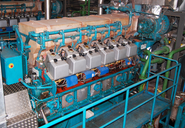 Wartsila 12V25SG Cogeneration Power Plant