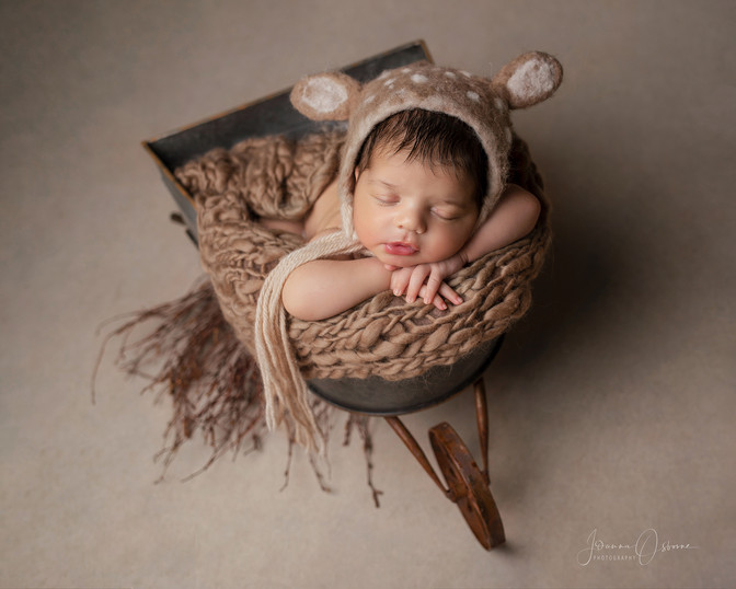 Newborn Photography Cheltenham