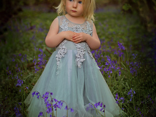 Bluebell Photoshoot in the Cotswolds
