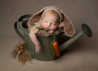 Newborn Photography Chippenham