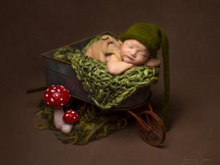 Newborn Photography Marlborough