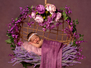 Newborn Photography Gloucestershire