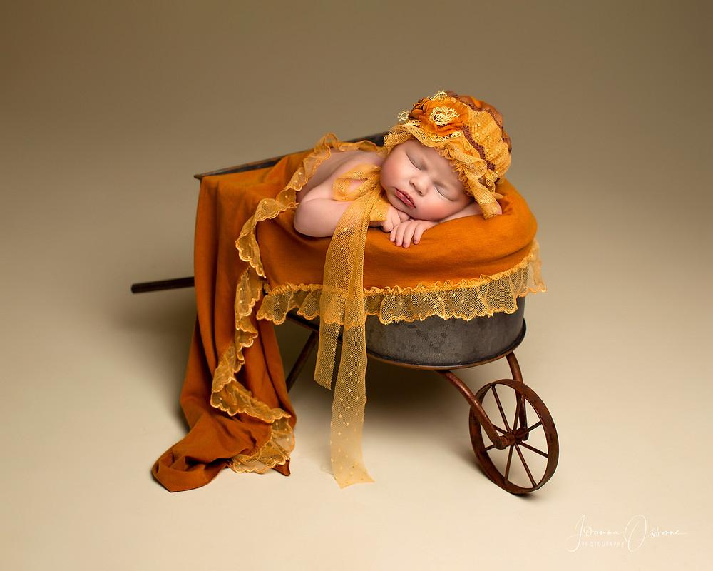 Newborn Photography Wheel Barrow
