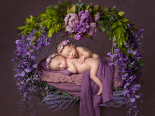 Associate Level Qualification With the Societies for Newborn Photography