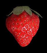 strowberry.jpg