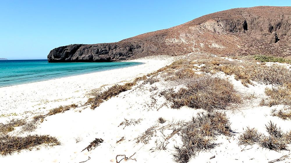 Playa Balandra La Paz Mexico Best Beaches of Mexico