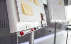 Workshop, Führungskräfte-Coaching