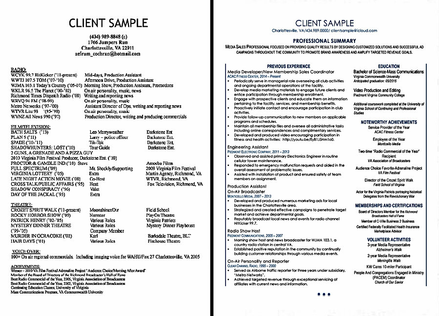 sample professional resume revisions