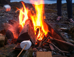 Marshmallows (from scratch)