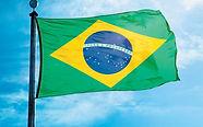 simbolo-patrio-brasilena-ocupo-quinto_0_