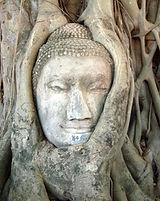 ayutthaya-wat_mahathat.jpeg