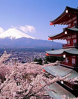 FOTO 1 Mount Fuji con cerezos florecidos