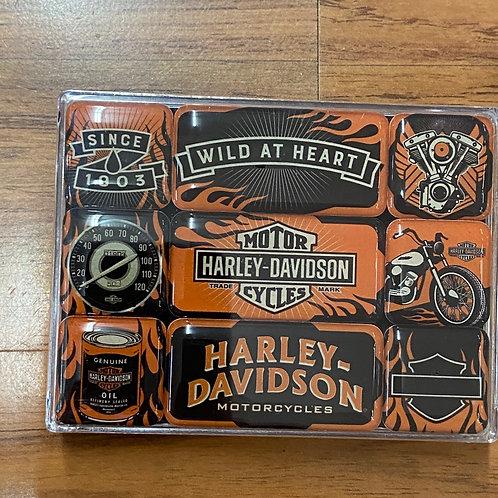 Harley Davidson Magnet Set