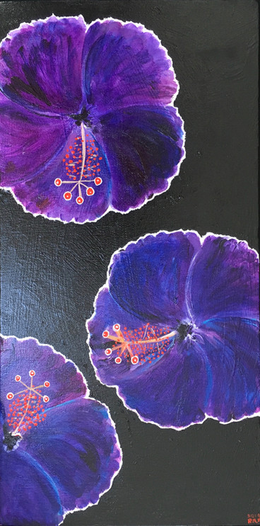 Purple Hibiscus Looking Sharp