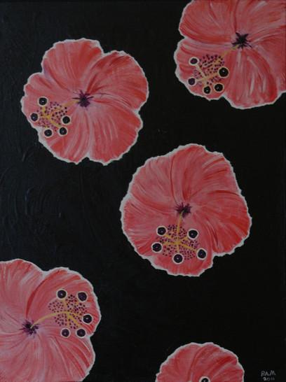 Pink Hibiscus Cruising Along