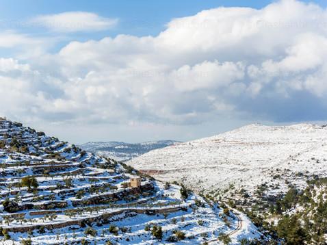 Elias Halabi - Landscape.jpg