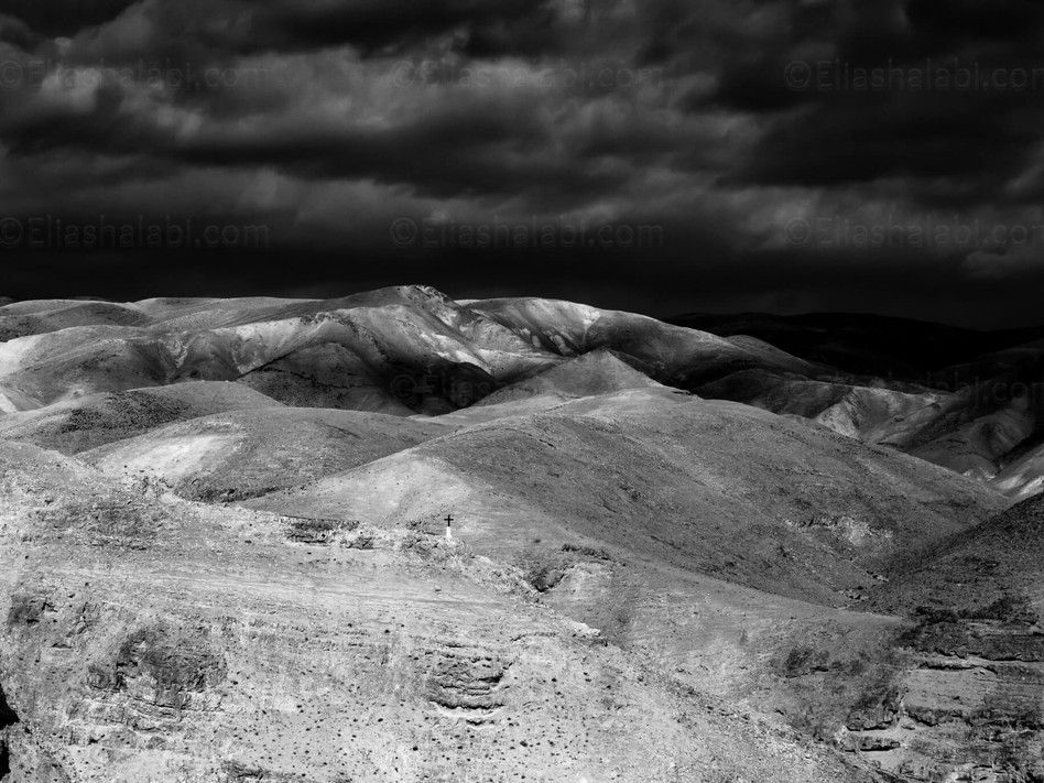 Elias Halabi - Landscape (23).jpg