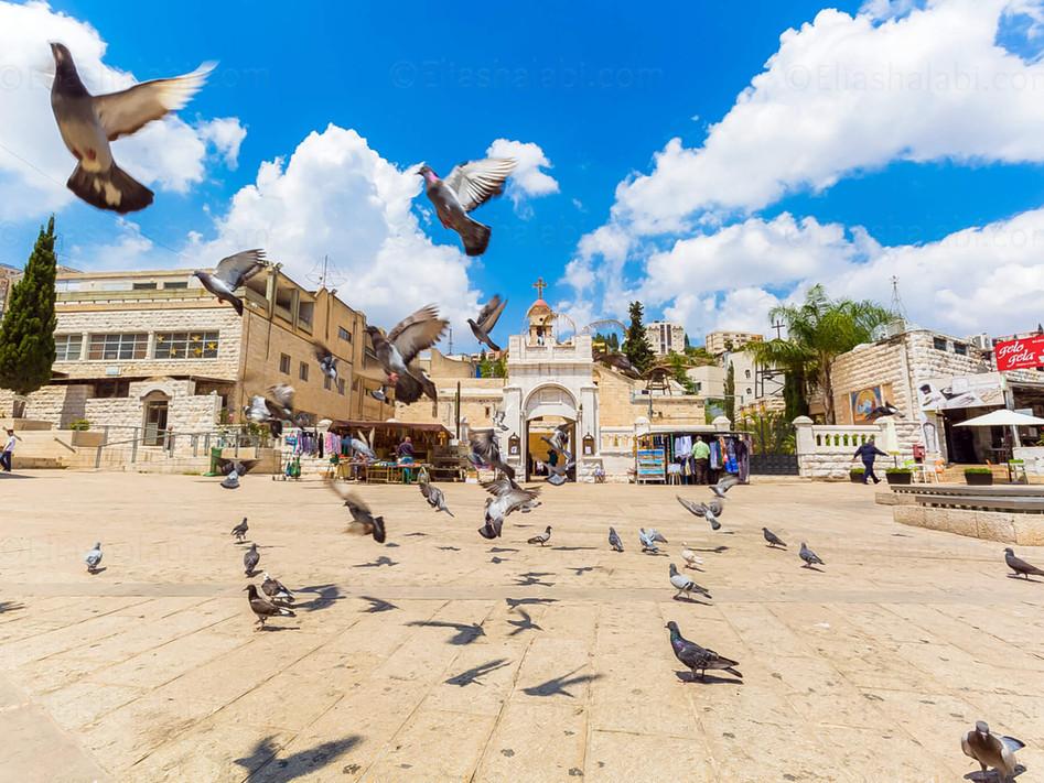 Elias Halabi - Cityscape (5).jpg