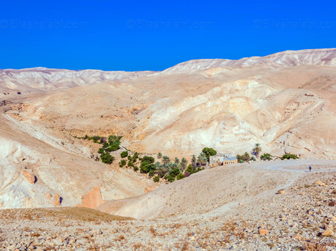 Elias Halabi - Landscape (12).jpg