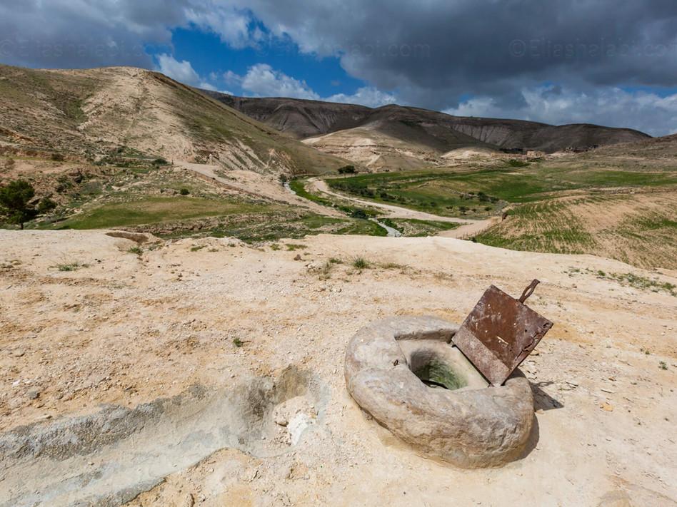 Elias Halabi - Landscape (2).jpg