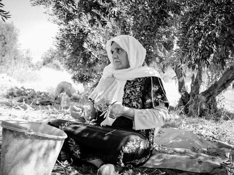 Elias Halabi - Lifestyle (15).jpg