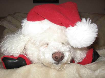 Maggy waitin up for santa