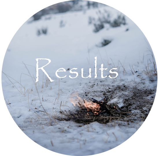 DSC_0853-Results.png