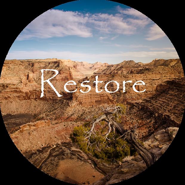DSC_4278-Restore.png