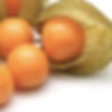 golden berries_edited.png