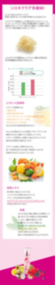 replenishIII_long2.jpg