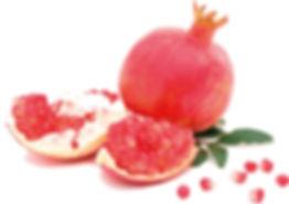 pomegranet-01.jpg