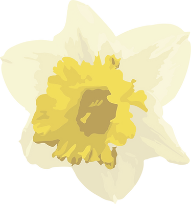 daffodil2-02_65.png