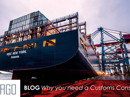 Why you need a Customs Consultant