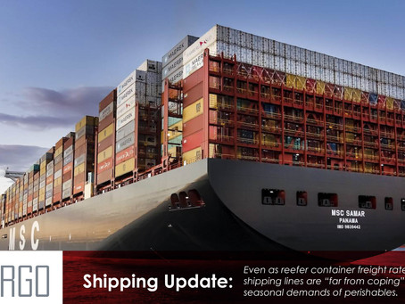 Shipping lines can't cope with booming perishables trade and lack of reefers