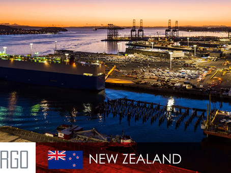 Major New Zealand ports swamped