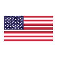 USA Icons.jpg