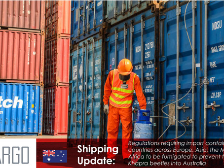 Import containers to be fumigated as Australia enforces Khapra beetle rules