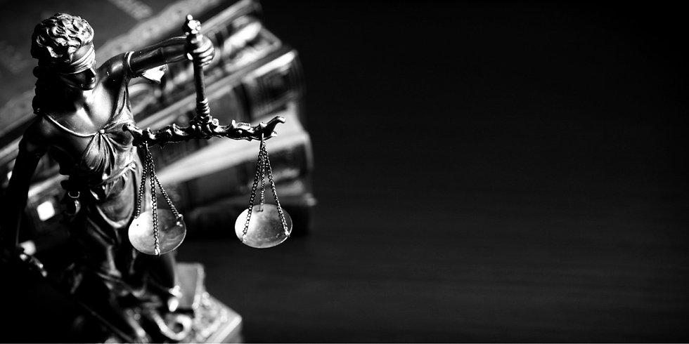 advogados em palhoça